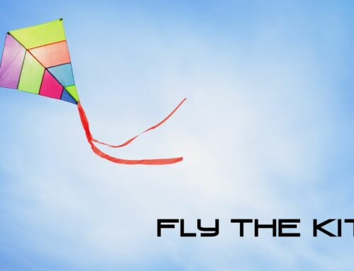 Fly the Kite